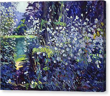 Tangled White Flowers  Canvas Print