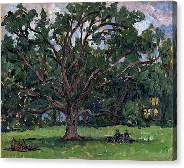 Tanglewood Tree Canvas Print by Thor Wickstrom