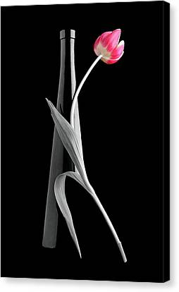 Tango Canvas Print by Manfred Lutzius