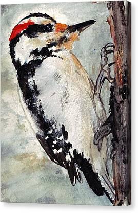 Tappity Tap Canvas Print by Debra Sandstrom