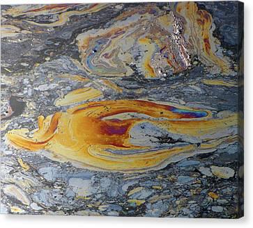 Tar Pit's Beauty II Canvas Print