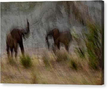 Tarangire Elephants 1 Canvas Print