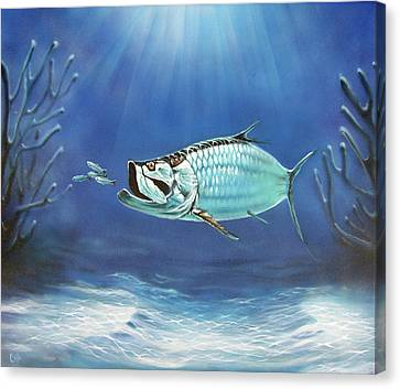 Tarpon Canvas Print by Larry Cole