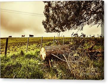 Tasmanian Country Farm Details Canvas Print by Jorgo Photography - Wall Art Gallery