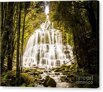 Tasmanian Waterfalls Canvas Print