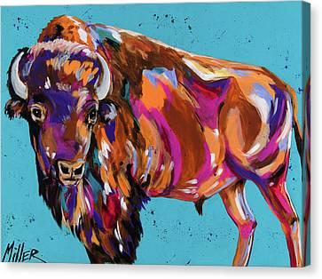 Tatanka Canvas Print by Tracy Miller