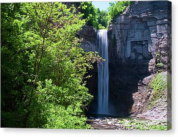 Taughannock Falls 0466 Canvas Print by Guy Whiteley