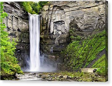 Taughannock Falls Gorge Canvas Print by Christina Rollo