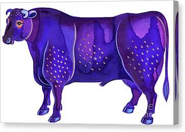 Taurus The Bull Canvas Print