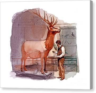 Taxidermist Canvas Print