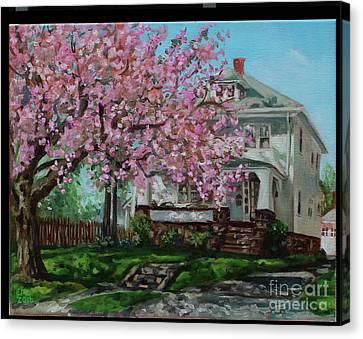 Taylor Cherry Tree Canvas Print by Edward Williams
