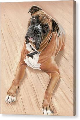 Taz My Best Friend Canvas Print by Vanda Luddy