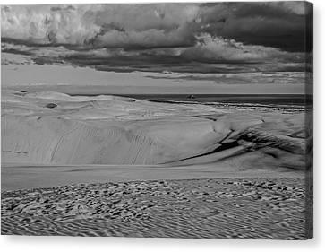 Te Paki Dunes Canvas Print by Tiarnan Colgan
