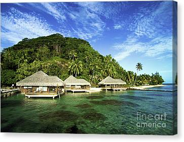 Te Tiare Resort Canvas Print by David Cornwell/First Light Pictures, Inc - Printscapes