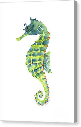 Teal Green Seahorse Canvas Print by Amy Kirkpatrick