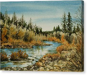 Teanoway River Wa Canvas Print