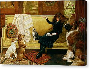 Fox Terrier Canvas Print - Teatime Treat by John Charlton