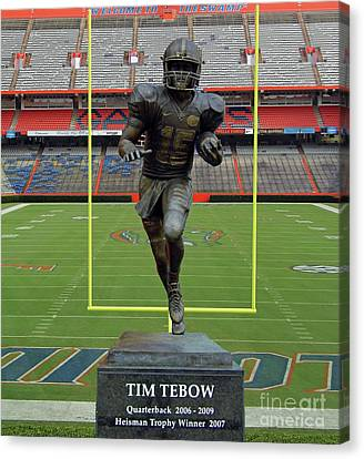 Tebow In The Swamp Canvas Print
