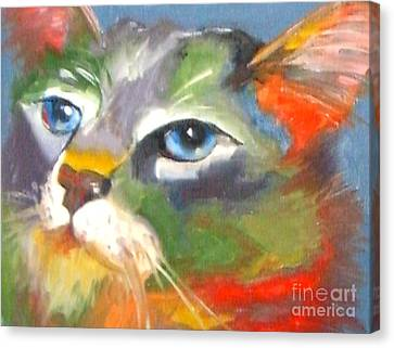 Technicolor Tabby Canvas Print by Susan A Becker