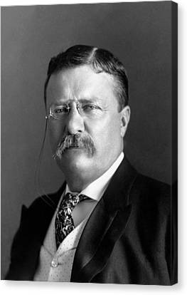 Bull Moose Canvas Print - Teddy Roosevelt Portrait - 1904 by War Is Hell Store