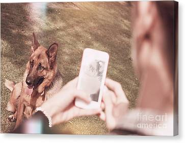 Teen Girl Taking Photo Of Dog With Smartphone Canvas Print by Jorgo Photography - Wall Art Gallery