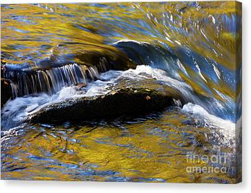 Canvas Print featuring the photograph Tellico River - D010004 by Daniel Dempster