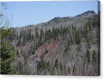 Temperance River Valley Gorge Canvas Print