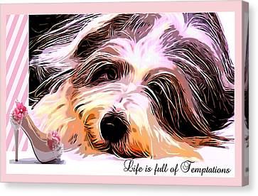 Scottish Dog Canvas Print - Temptation by Kathy Kelly