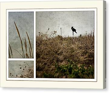 Ten Is For Sorrow Canvas Print by Kevin Bergen