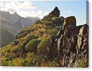 Canvas Print featuring the photograph Tenerife Canary Islands by Marek Stepan