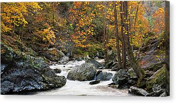 Tennessee Colors Canvas Print by Brad Hoyt