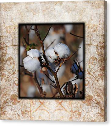 Tennessee Cotton II Photo Square Canvas Print
