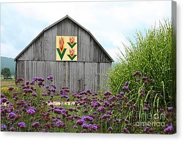 Tennessee Tulip Canvas Print