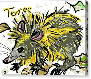 Tenrec Canvas Print by Brett LaGue