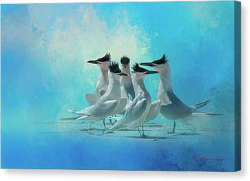 Seabird Canvas Print - Tern And Look by Marvin Spates