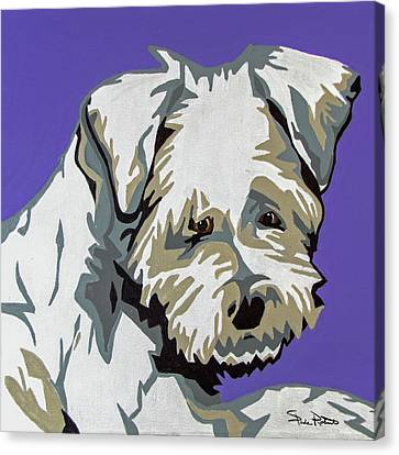 Terrier Mix Canvas Print by Slade Roberts