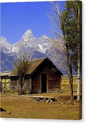 Teton Cabin Canvas Print by Marty Koch