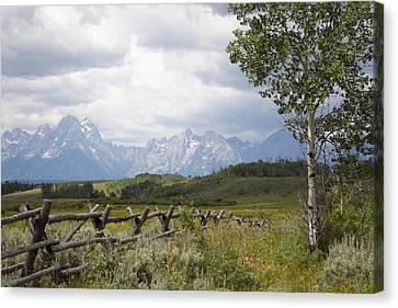 Teton Ranch Canvas Print by Diane Bohna