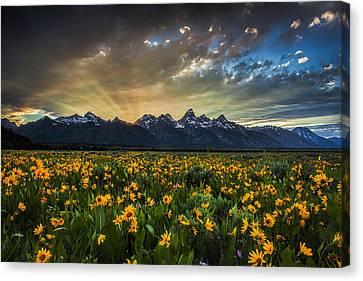 Sun Rays Canvas Print - Teton Rays by Andrew Soundarajan
