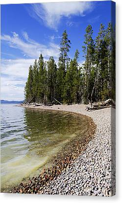 Teton Shore Canvas Print by Chad Dutson