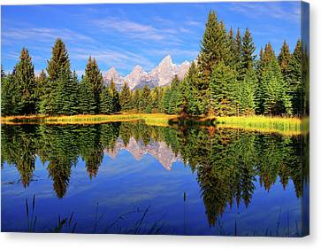 Teton Tranquility Canvas Print by Greg Norrell