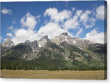Teton View Canvas Print by Diane Bohna