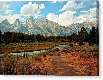 Tetons Grande 5 Canvas Print by Marty Koch