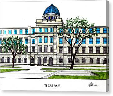 Texas Am University Canvas Print by Frederic Kohli