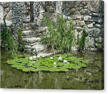 Texas Guadalupe River Canvas Print