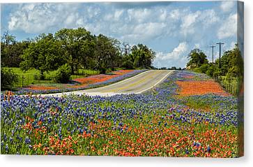 Texas Highways Canvas Print by Stephen Stookey