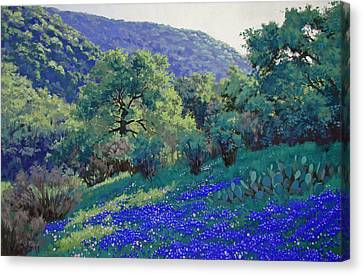 Texas Hill Country Blues Canvas Print by Russell Cushman