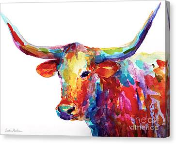 Texas Longhorn Art Canvas Print