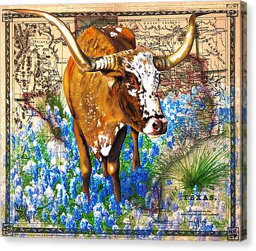 Texas Longhorn In Bluebonnets Canvas Print