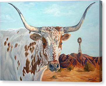 Texas Longhorn Canvas Print by Jana Goode